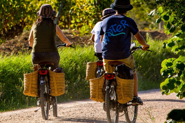 The landscapes and the climate of Catalonia are an enticement to enjoy cycle tourism the whole year